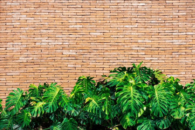 Feuilles vertes avec mur de briques avec espace libre pour le texte. abstrait
