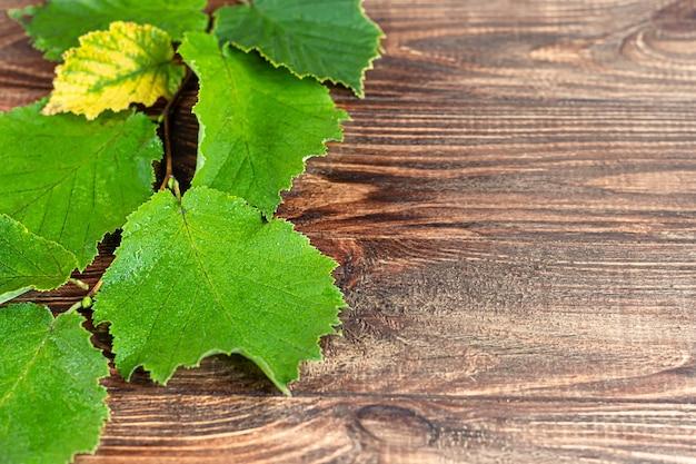 Feuilles vertes de noisettes sur un fond en bois. arrière-plans et textures. espace de copie