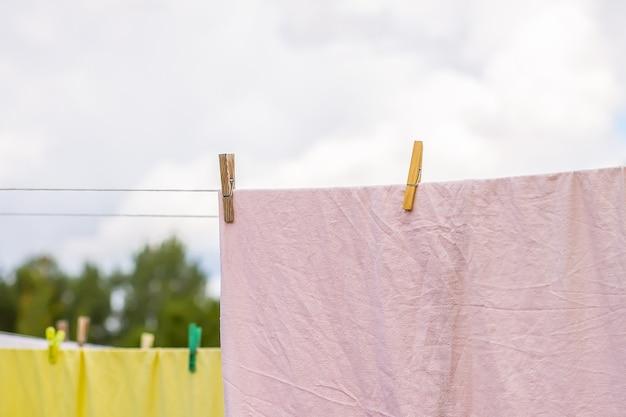 Feuilles vertes et tableau au soleil sur fond pastel bleu doux. conception d'été.