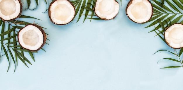 Feuilles vertes tropicales, feuilles de palmier et noix de coco