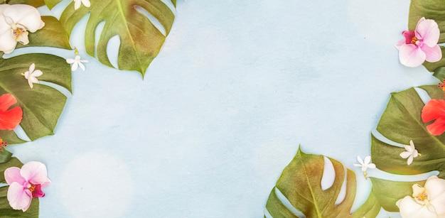 Feuilles vertes tropicales. fond d'été