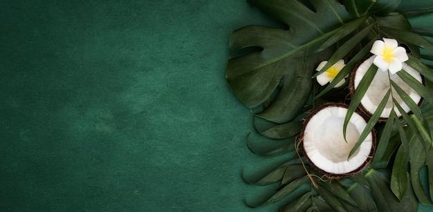 Feuilles vertes tropicales et noix de coco