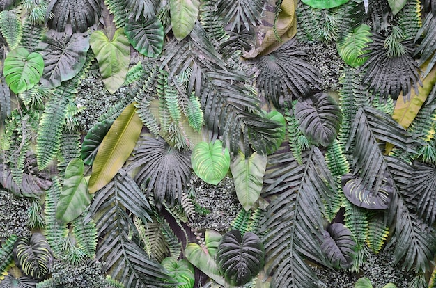 Feuilles vertes tropicales