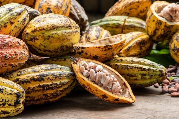 Fèves de cacao et gousse de cacao sur une surface en bois.