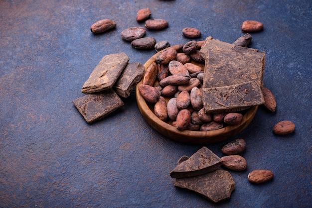 Fèves de cacao naturelles et chocolat