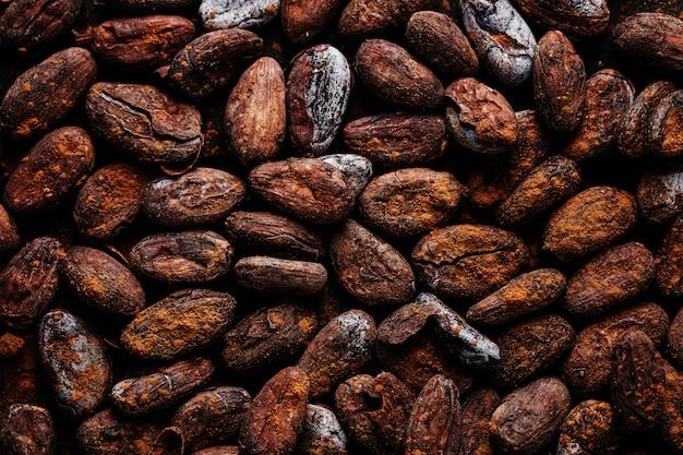 Fèves de cacao sur la plaque closeup