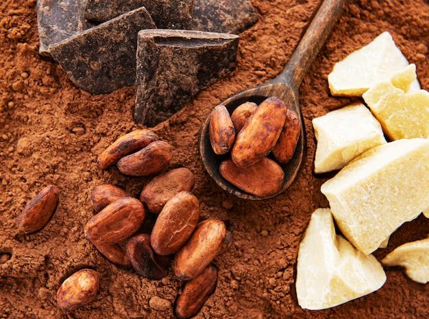 Fèves de cacao et poudre de cacao