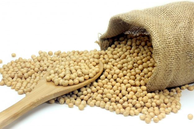 Fèves de soja crues, aliments frais et biologiques, sac rustique à l'intérieur isolé sur fond blanc