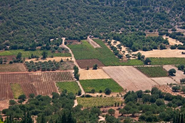 Field, monte enos - céphalonie, grèce