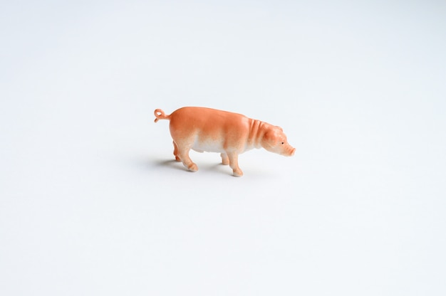 Figure de cochon sur fond blanc