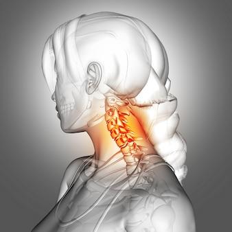 Figure féminine 3d avec les os du cou en surbrillance