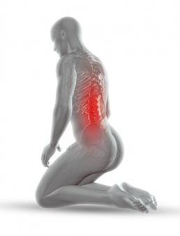 Figurine médicale masculine 3d avec squelette en position agenouillée