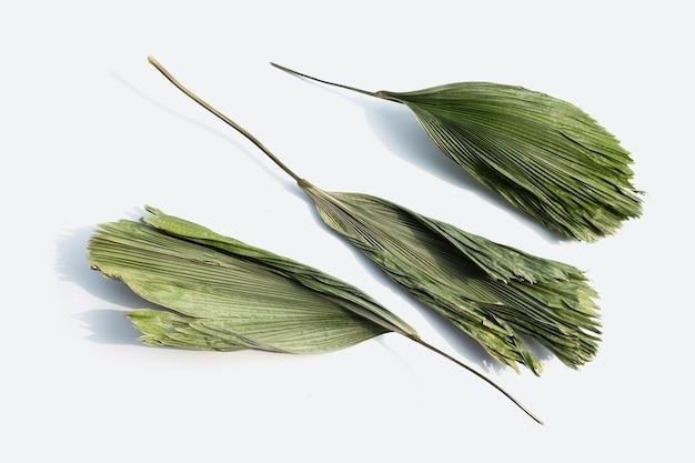 Fiji fan palm feuilles sèches isolés sur une surface blanche