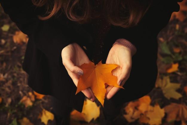 La fille aux mains ouvertes tient une feuille jaune dans la forêt. fond d'automne.