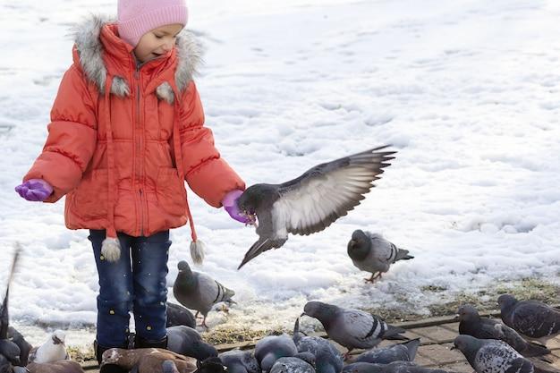 Une fille de cinq ans nourrit des oiseaux dans le parc en hiver. sur le bras se trouve un pigeon.