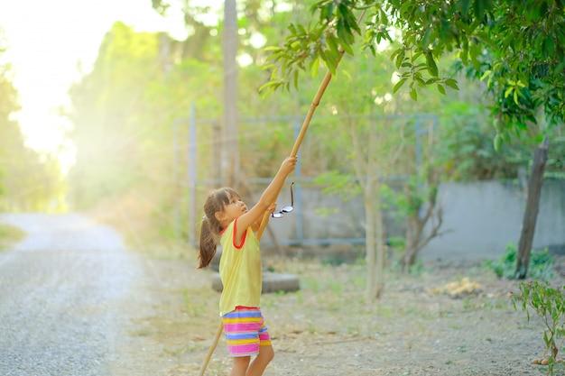 Une fille cueillant des fruits dans une ferme