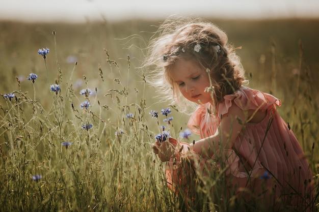 Fille dans un champ recueille un bouquet de fleurs. petite fille recueille des fleurs dans le champ. été