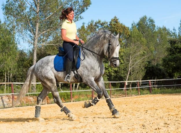 Fille d'équitation et étalon