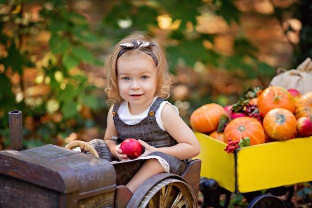 Fille heureuse dans une récolte d'automne de tracteur: avec un chariot avec des citrouilles, viburnum, rowan, pommes