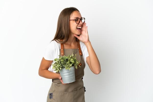 Fille de jardinier tenant une plante sur fond blanc isolé criant avec la bouche grande ouverte sur le côté