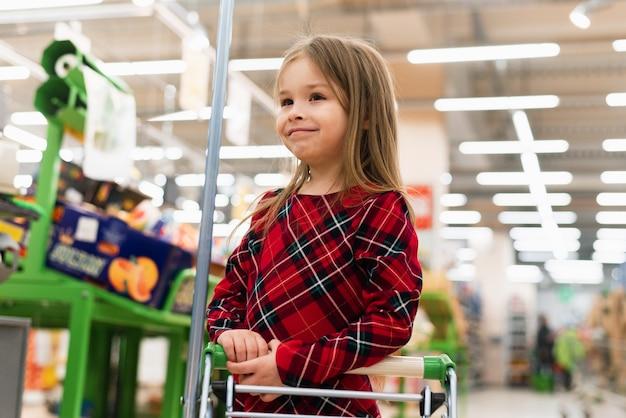 Une fille joyeuse tient un chariot et sélectionne des produits à la maison. le concept de shopping au supermarché, sélection de produits, vente