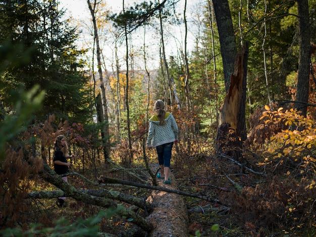 Fille marchant sur un tronc d'arbre dans une forêt, unorganized kenora, kenora, lac des bois, ontario, c