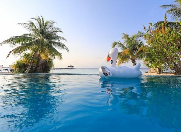 Fille nage sur un oiseau gonflable dans la piscine
