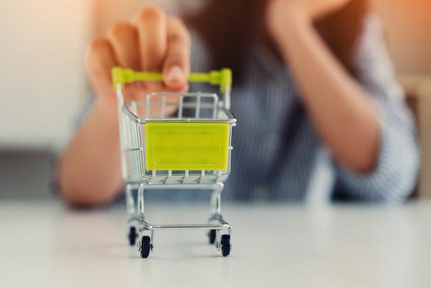 Fille avec panier en main, concept de magasinage en ligne.