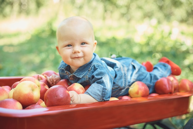 Fille avec pomme dans le verger de pommiers.
