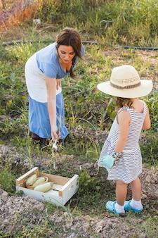 Fille regardant une femme récoltant des oignons de printemps dans le champ