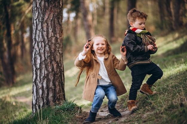 Fille avec son petit frère ensemble dans la forêt