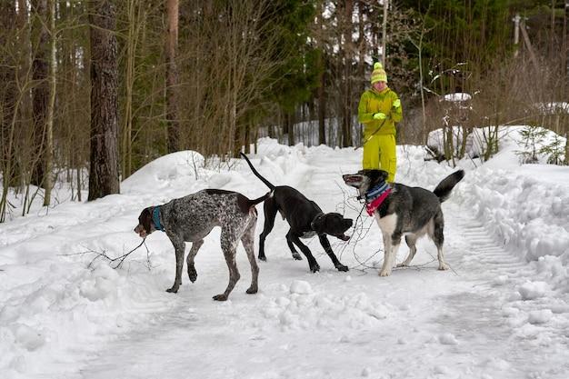 Une fille en survêtement jaune promène trois chiens de chasse dans un parc d'hiver