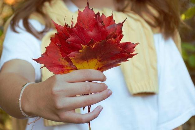 Fille tenant dans ses mains un bouquet de feuilles d'érable rouges et jaunes d'automne
