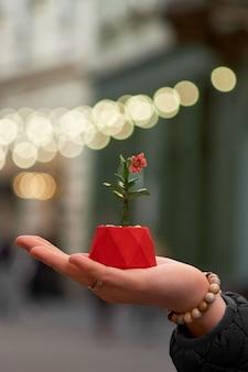 La fille tenir pot avec gerbera plante dans la rue. fermer