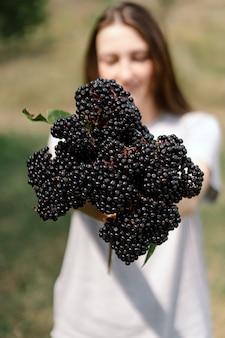 Fille tient dans les mains des grappes de fruits sureau noir sambucus nigra aîné noir sureau noir européen...
