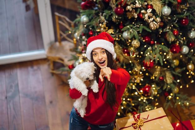Une fille tient un petit chien sur ses mains au réveillon du nouvel an avec un ami
