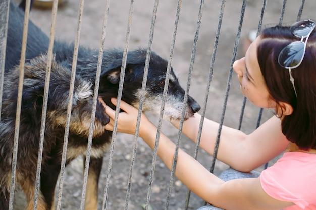 Fille volontaire dans la pépinière pour chiens. refuge pour chiens errants.