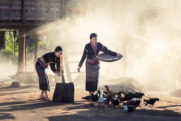 Filles asiatiques (hmong) nourrissant des poulets dans la campagne laotienne