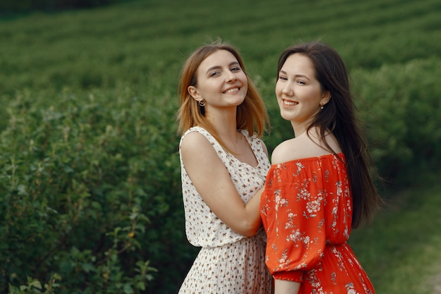 Filles élégantes et élégantes dans un champ d'été