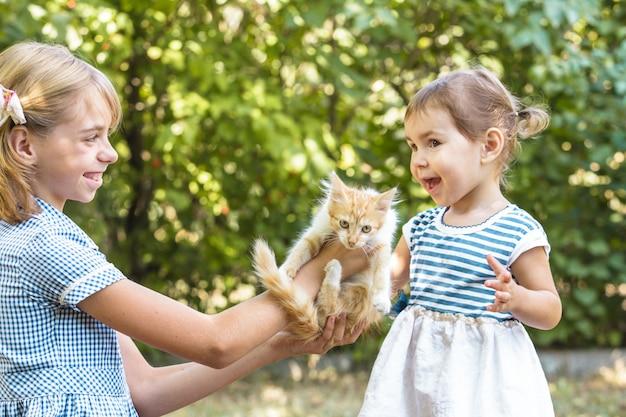 Les filles jouent avec le chaton en plein air dans le parc
