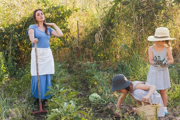 Filles récoltant des légumes avec sa mère dans le champ
