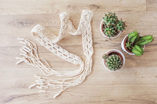 Fils de coton naturel et pots de cactus