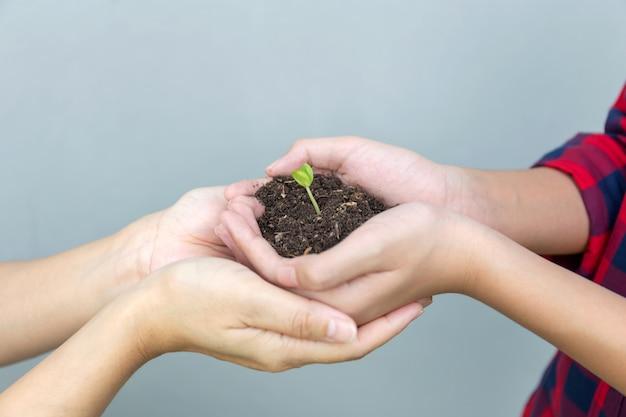 Fils et mère tenant une plante dans les mains