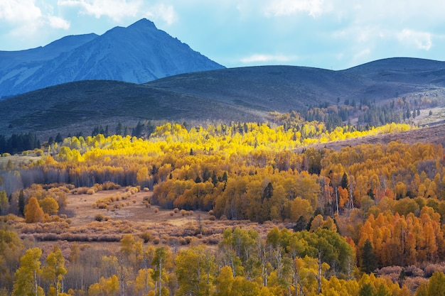 Fin de la saison d'automne dans les montagnes