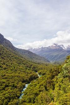 Fiordland national park river parmi la forêt dense au-dessous de la nouvelle-zélande