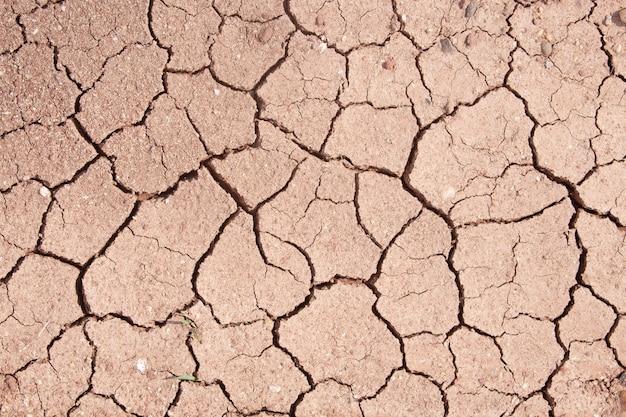 Fissure de boue, texture ou fond du sol fissuré brun