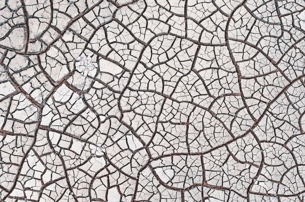 Fissures en bois sur le sol - bon pour l'arrière-plan