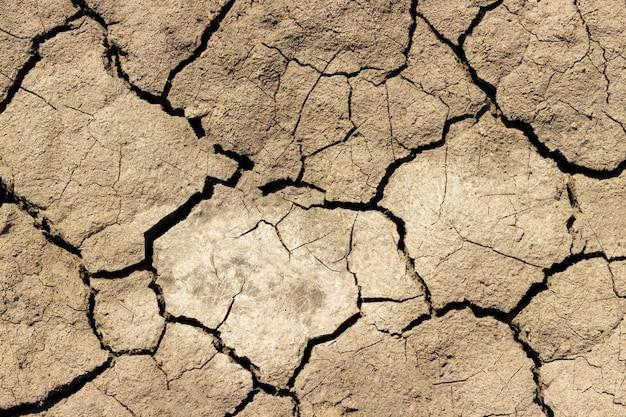 Fissures dans le sol, terre noire