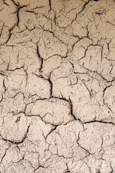 Fissures du sol