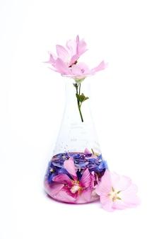 Flacon flacon extrait de pétales de fleurs cosmétiques naturels. produit biologique naturel à base de plantes et de fleurs, cosmétiques à base de plantes pour les soins de la peau. essai de laboratoire de médecine de science de beauté de nature